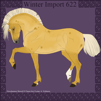 Winter Import 622 by ThatDenver