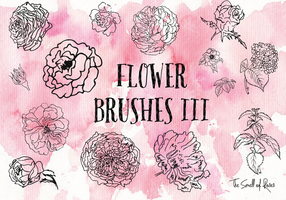 Flower Brushes 3 - The Smell of roses by thesmellofroses