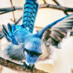 Jay Spirit by clippercarrillo