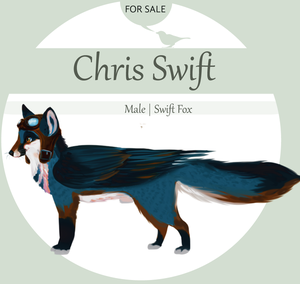 SALE Swift Fox by Kanbhik