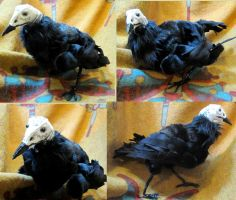 Praxis Von Greier Turkey Vulture Plush Toy by Jarahamee