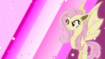 Flutterbat Wallpaper 2 by SailorTrekkie92