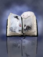 Book cat by Flore-stock