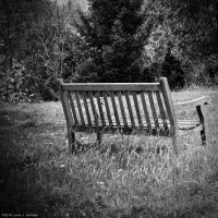 The Lonely Bench by WickedOwl514