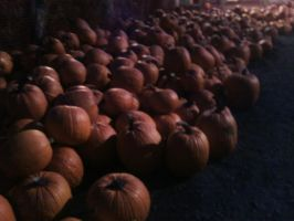 Never-ending pile of pumpkins by SolarLunix