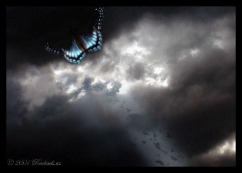Celestial Butterfly by Rachaels