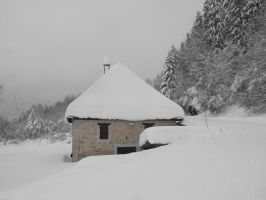 Snowy house and Forest of Grande Chartreuse by A1Z2E3R
