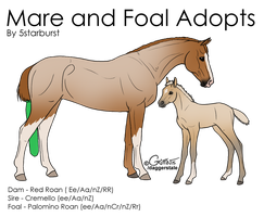 Mare and Foal Adopts #1 by 5starburst