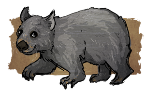 WOMBAT by painted-flamingo
