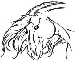 Andalusian Line Art by hfc