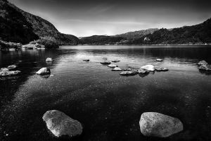 Llyn Dinas in mono by CharmingPhotography