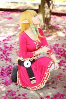 Skyloft Zelda from Skyward Sword by LayzeMichelle