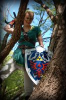 Link pounce from above by AuberyMirkwood