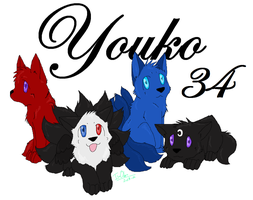 Youko34 ID by ILuvOden