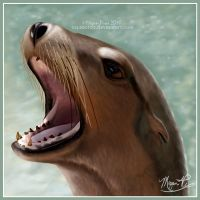 Sea Lion Portrait by AquaOrca
