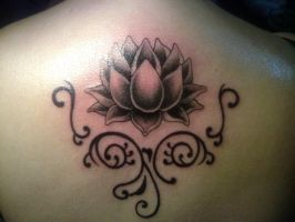 lotus by freevil