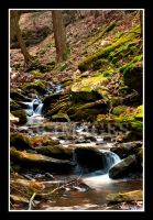 Mountian Stream by sscben