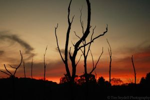 Devils Sunset by timseydell