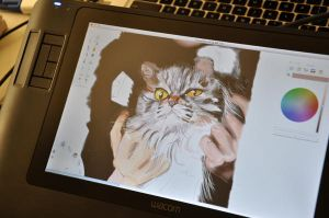 me and my wacom 2 by billconan