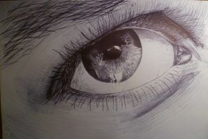 An Eye drawn in biro by SebHarrington