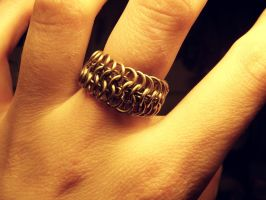 Maille2_ring by ImbierinisSausainis