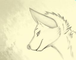 Water color test [Paint tool sai] by kit-cat-husky