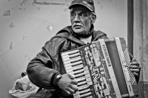 accordion by neronin