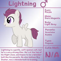 Lightning Bio by LudiculousPegasus