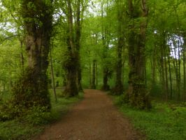 green way by cacharoth