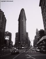 Flat Iron by WEArnold