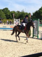 Horse jumping stock 6 by Bolero-lief