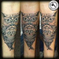 sugar owl by arturtattooart