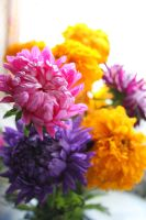 Flowers by Armigerer
