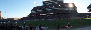 Kyle Field by saintness