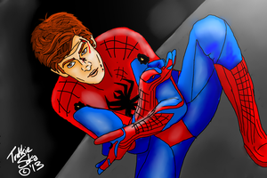 The Amazing Spiderman (RE-DO) by Chrisily
