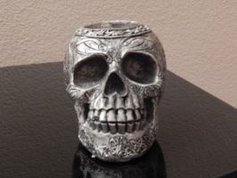 Skull 004 by diphylla