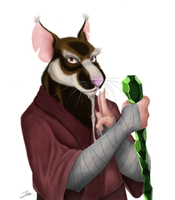 Splinter by BakaMeganekko