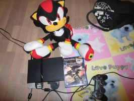 Shadow and his game on PS2 by Specter1997