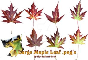 Maple Leaves Pack 1 by Thy-Darkest-Hour