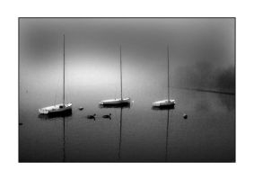 Boats at rest by yellownoise