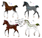 Padros Foal Designs by barbed-heart