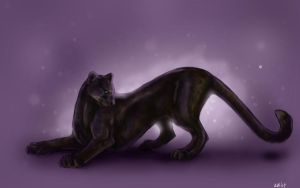 Panther Wallpaper by Puppy-Chow