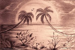Lovely palm trees_sunset by BernadetteCross
