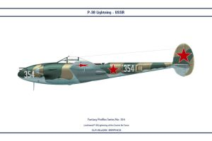 Fantasy 354 P-38J USSR by WS-Clave