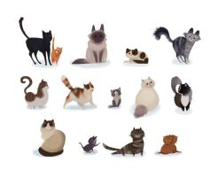 Cats by Caedia