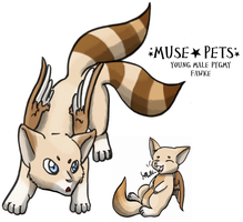 Drifter7071: Reveur by Muse-Pets