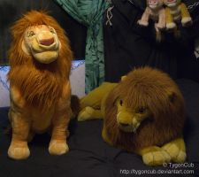 DS Mufasa and Douglas Simba Size Comparison by TygonCub