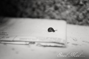 Snail Mail... by Joleisha