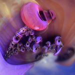 The Ultra Violent Screams of Nepenthes Ampullaria by MANDELWERK