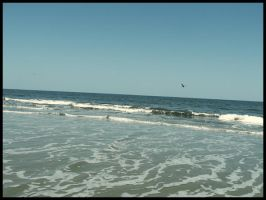 Jekyll Island3 by sees2moons